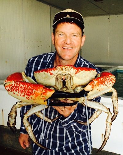 King Crabs are the biggest in the world, this ones a massive 4 kilos, and they grow at least twice this big