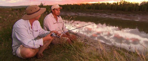 In search of Sawfish - 2011