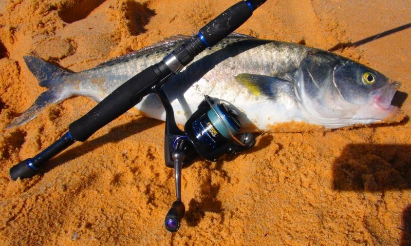 how to set up a fishing line australia