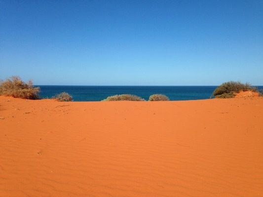 Shark Bay is where the red dessert meets the sea and the fishing is beyond compare